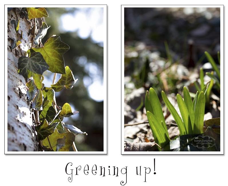 greening up