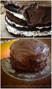 Laras-Cake1a